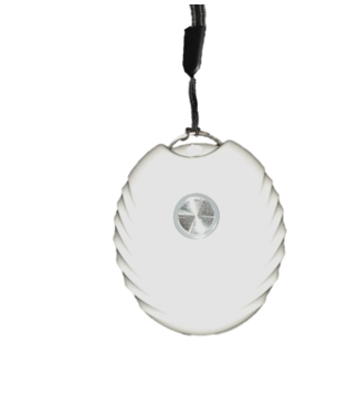 ZORB ZORB WEARABLE AIR PURIFIER
