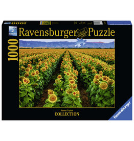 Ravensburger Fields of Gold