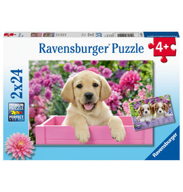 Ravensburger Me & my pal