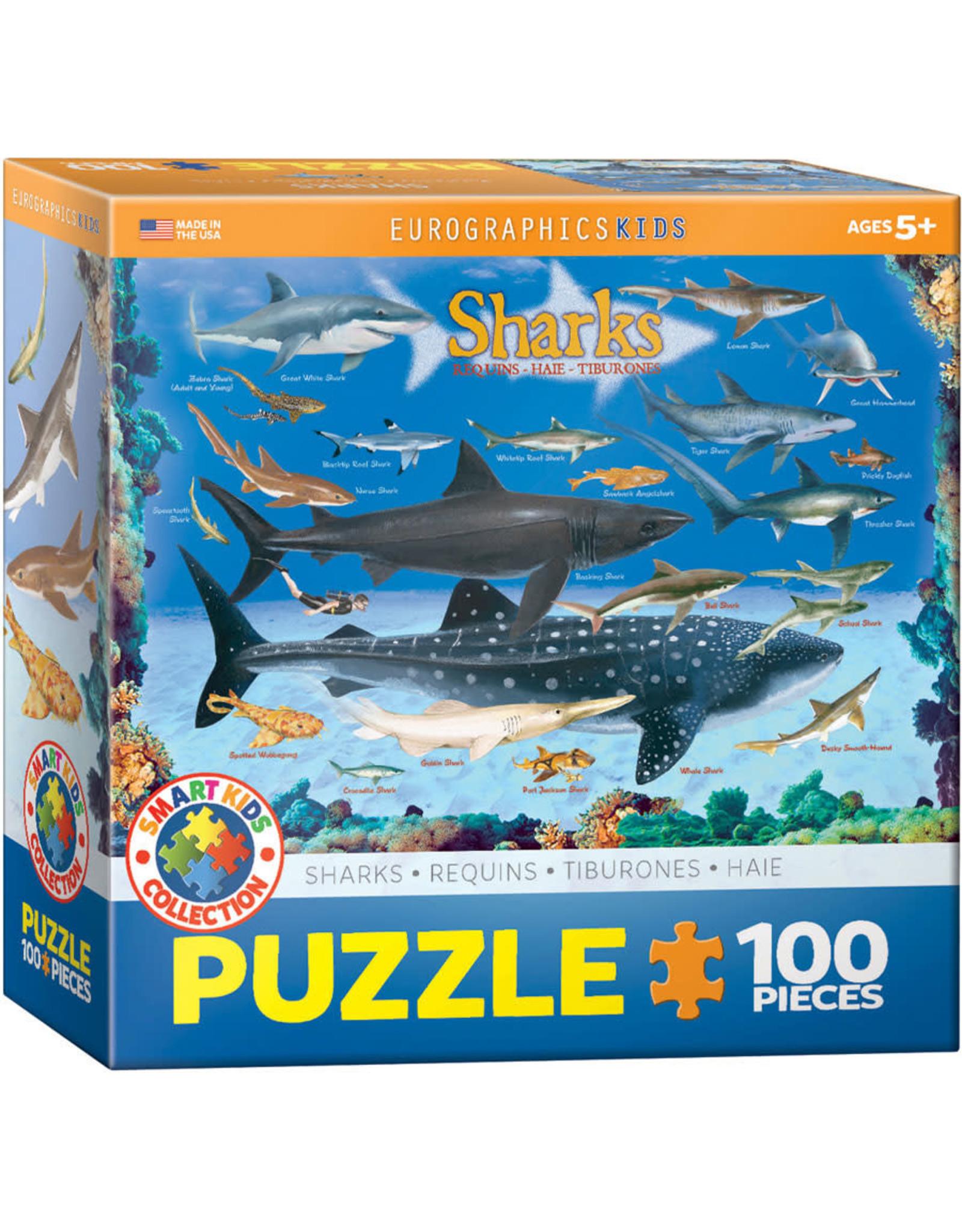 EUROGRAPHICS Sharks