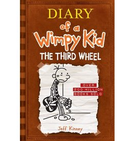 Hachette Book Group Third Wheel (Diary of a