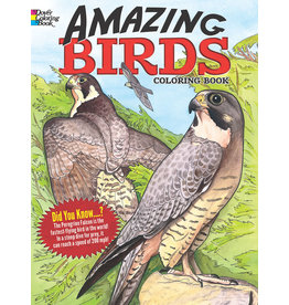 DOVER PUBLICATIONS INC Soffer - Amazing Birds