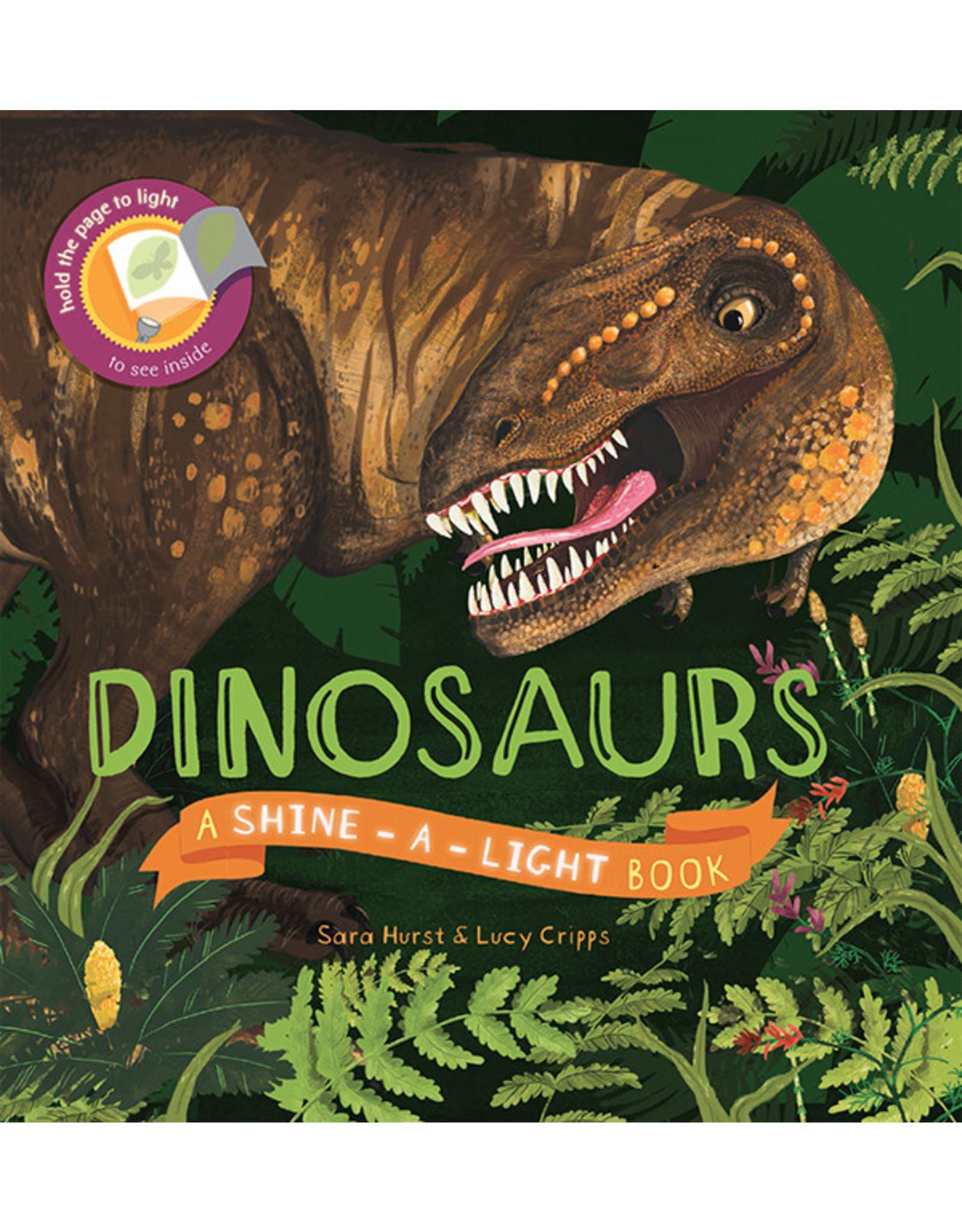 Usborne & Kane Miller Books Shine-A-Light, Dinosaurs