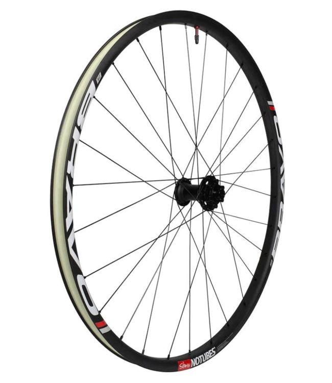 Stan's No Tubes, Bravo Pro, Wheel, 29'', Tubeless Ready, 15mm TA, OLD: 110mm, Brake: Disc IS 6-bolt, Front