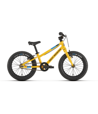 Rocky Mountain Bicycles Rocky Mountain, Edge Jr 16 2020