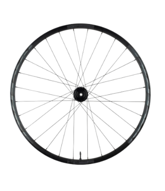 RaceFace RaceFace, Aeffect R Wheel, 30, 15x110 Front