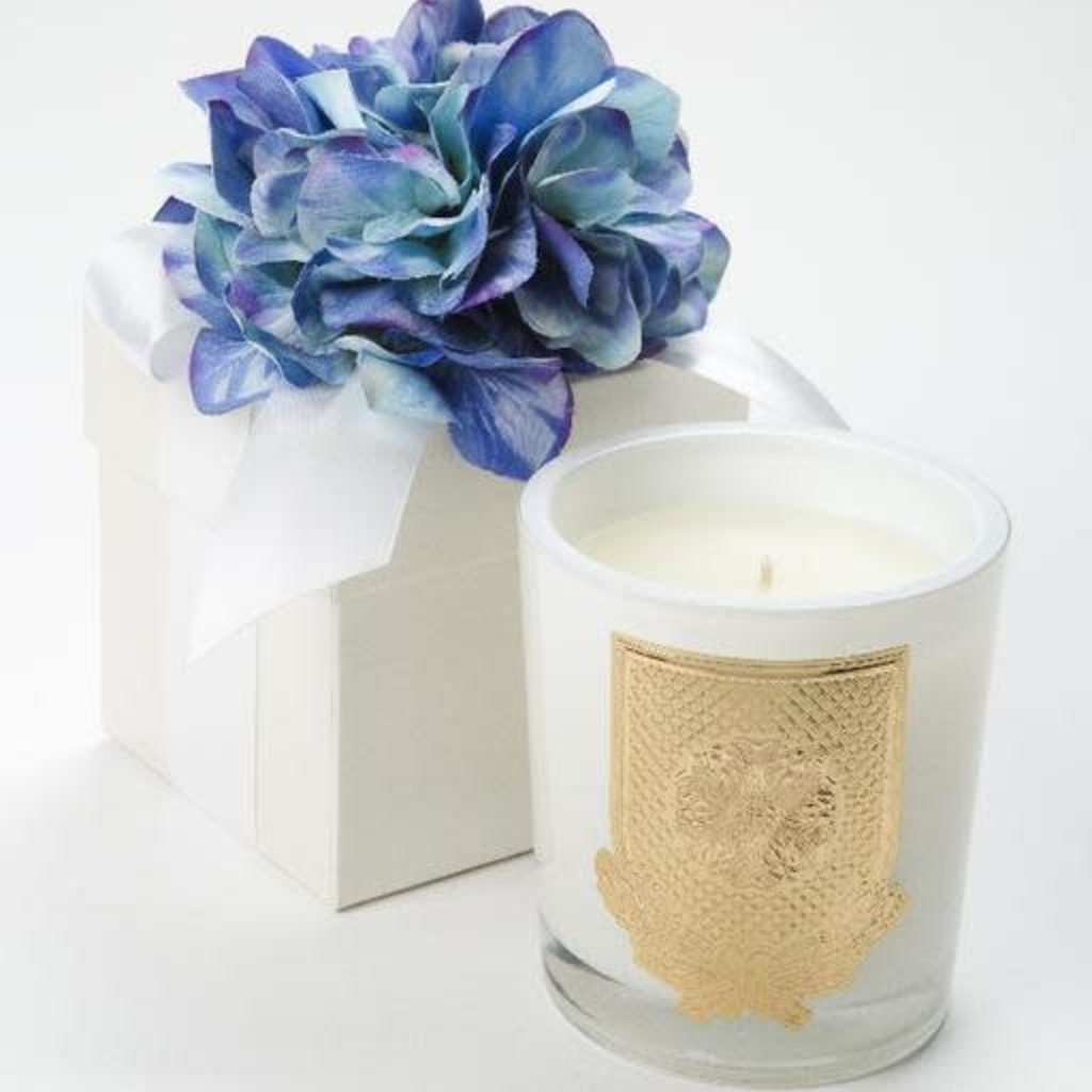 Blue Hydrangea Boxed Flower Candle