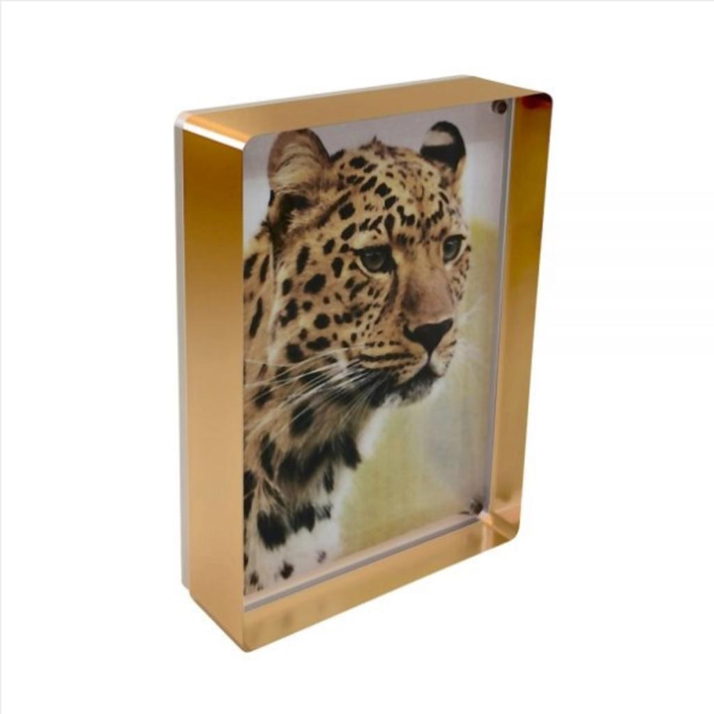 """Gold Prestige Magnet Frame 4""""x6"""""""