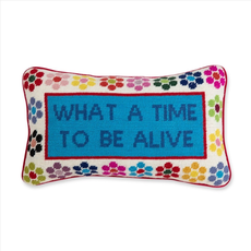 What a Time Needlepoint Pillow