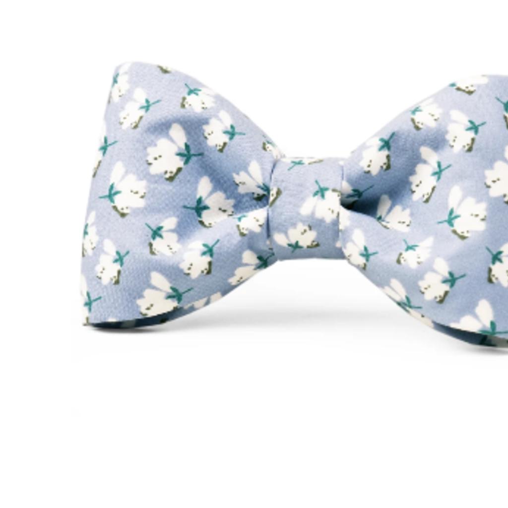 High Cotton bow tie collar MEDIUM