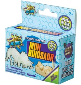 TOYSMITH MINI DINOSAUR EXCAVATION