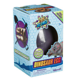 TOYSMITH DINO EGG EXCAVATION (12)