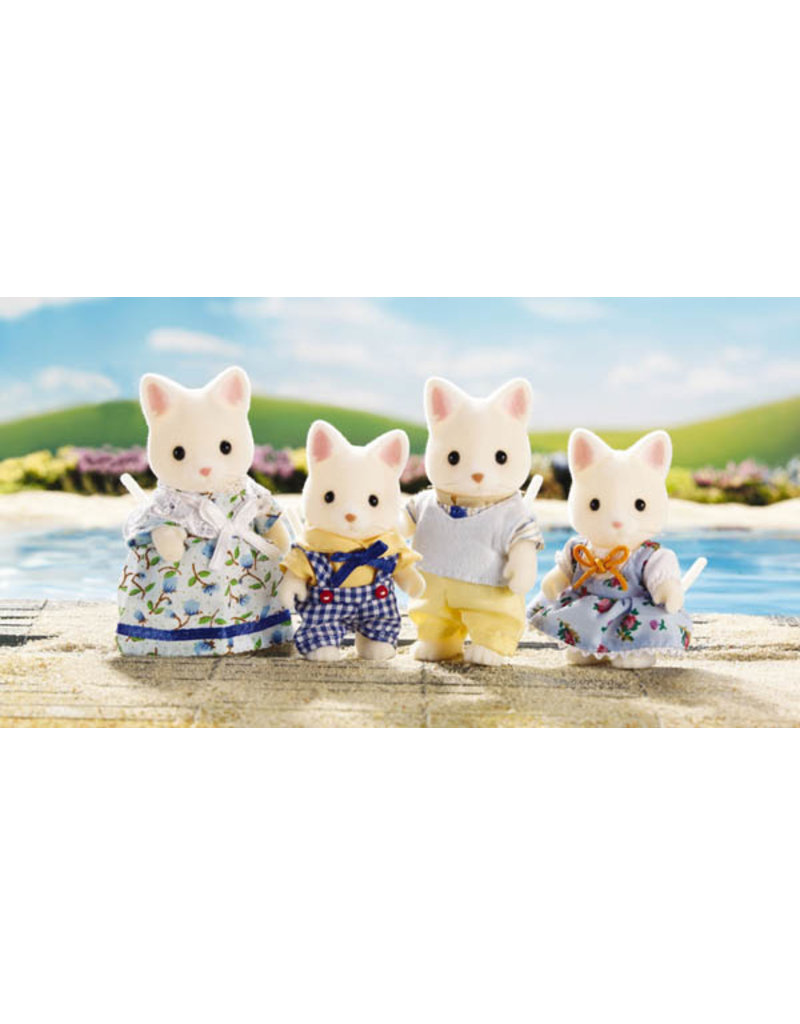 INTERNATIONAL PLAYTHINGS SILK CAT FAMILY