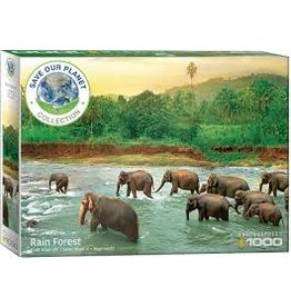 EUROGRAPHICS Rainforest 1000 pc