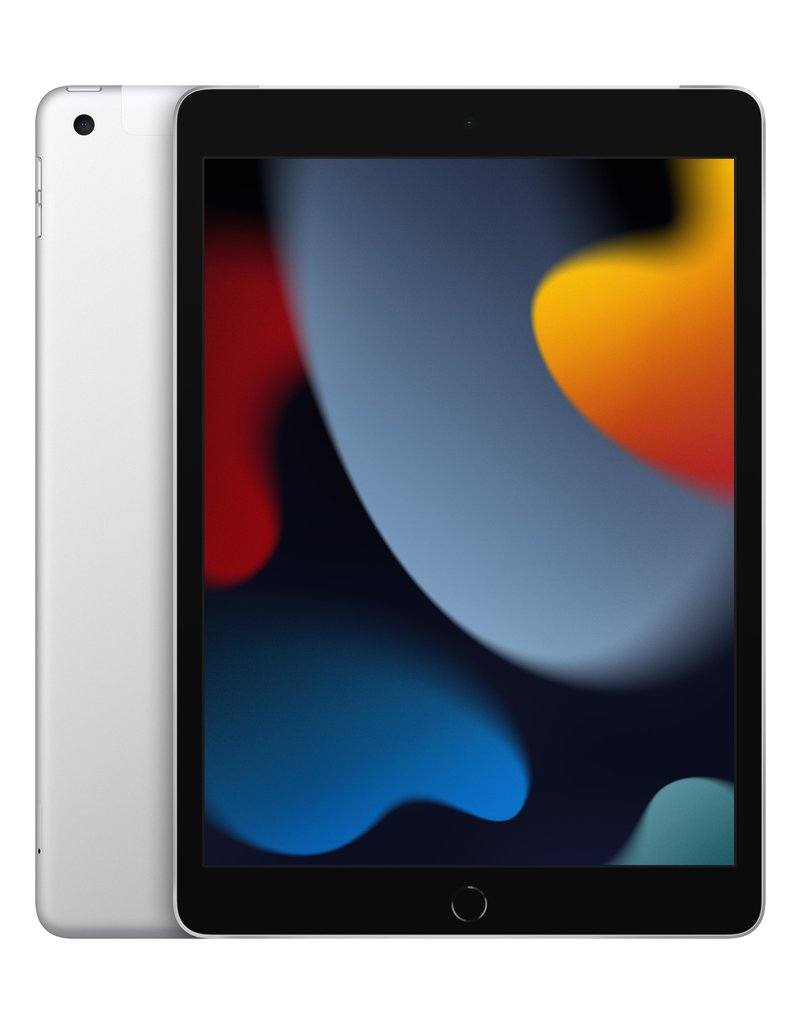 10.2-inch iPad Wi-Fi + Cellular 256GB - Silver 9th gen
