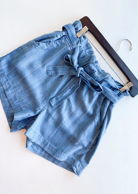 Light Striped Chambray Paperbag Shorts