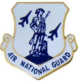 MidMil Air National Guard Pin 1 1/8""