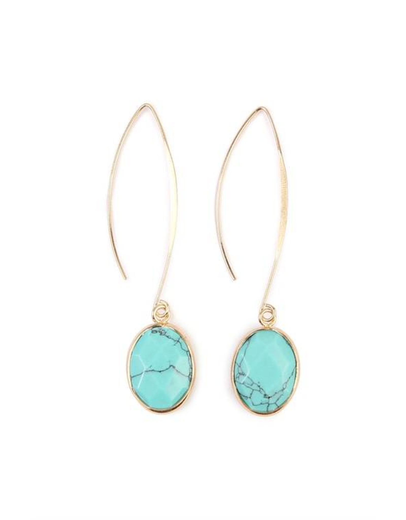 Turquoise Natural Stone Drop Earrings