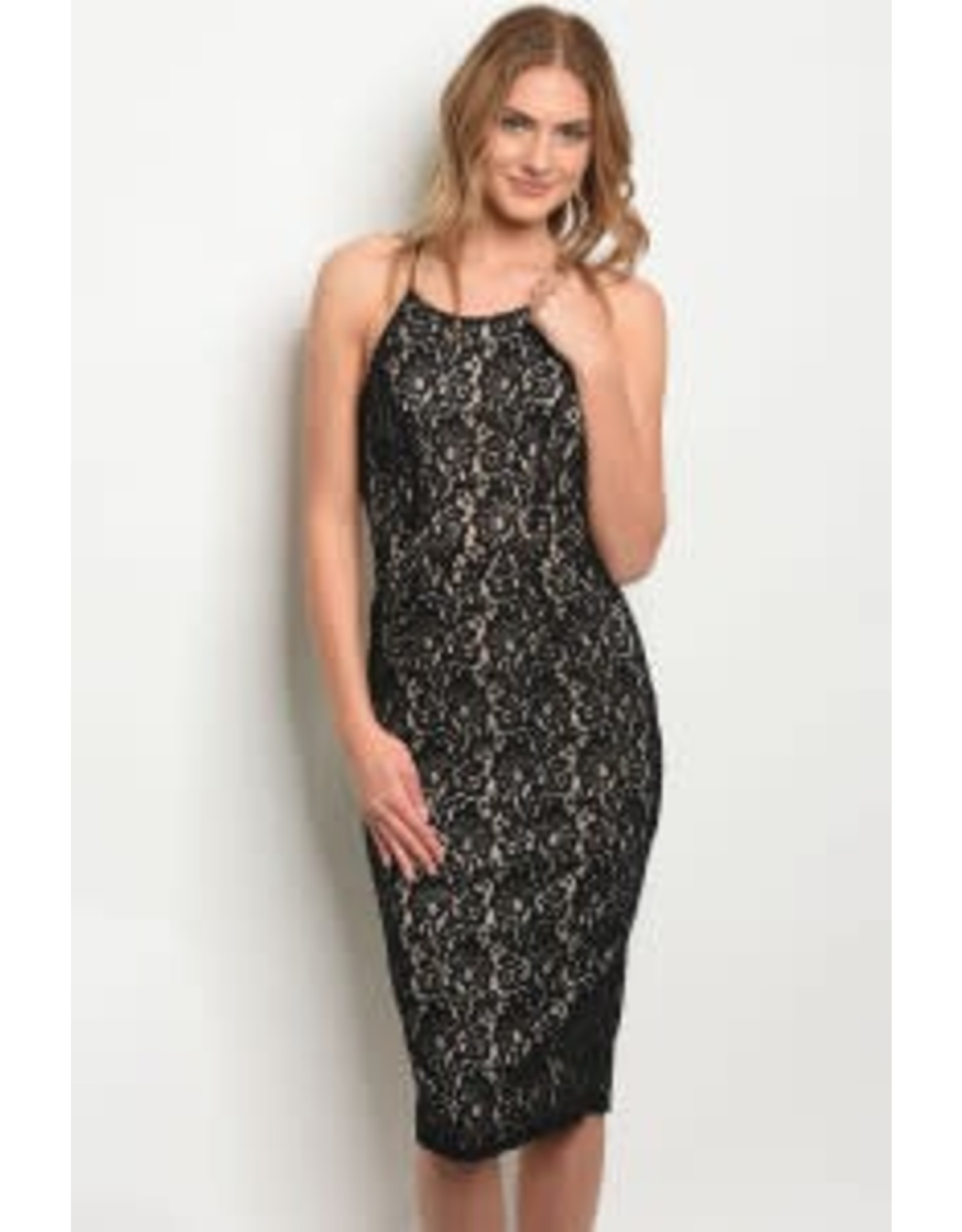 Scoop Neck Lace Bodycon Dress