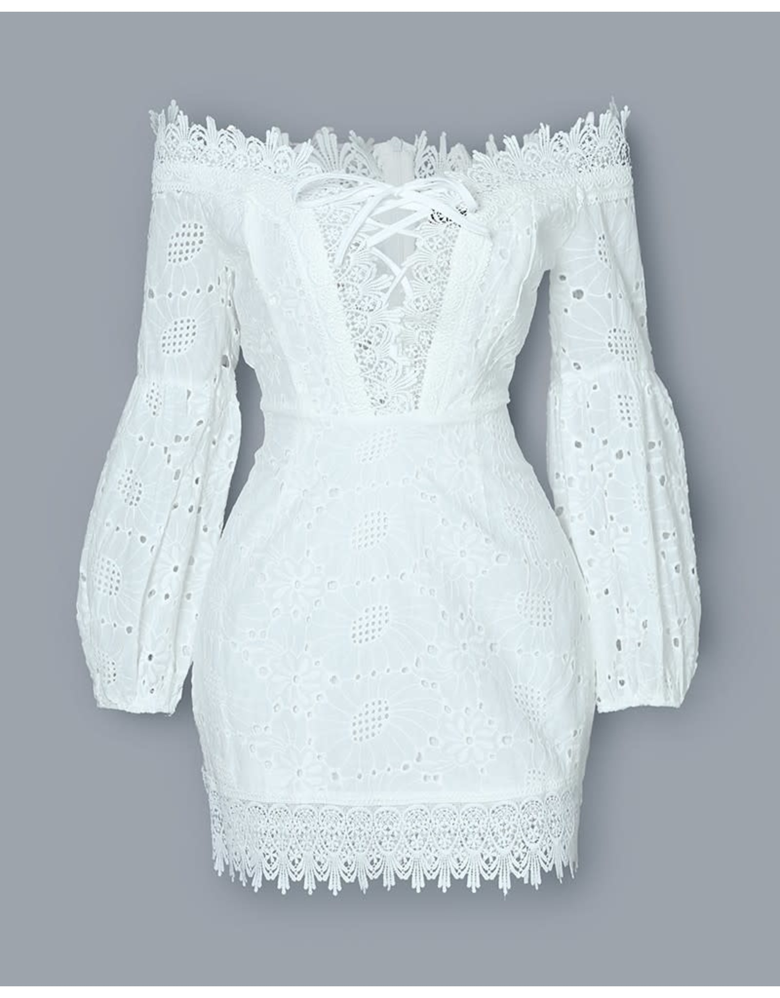 Off the Shoulder Lace Bodycon Dress