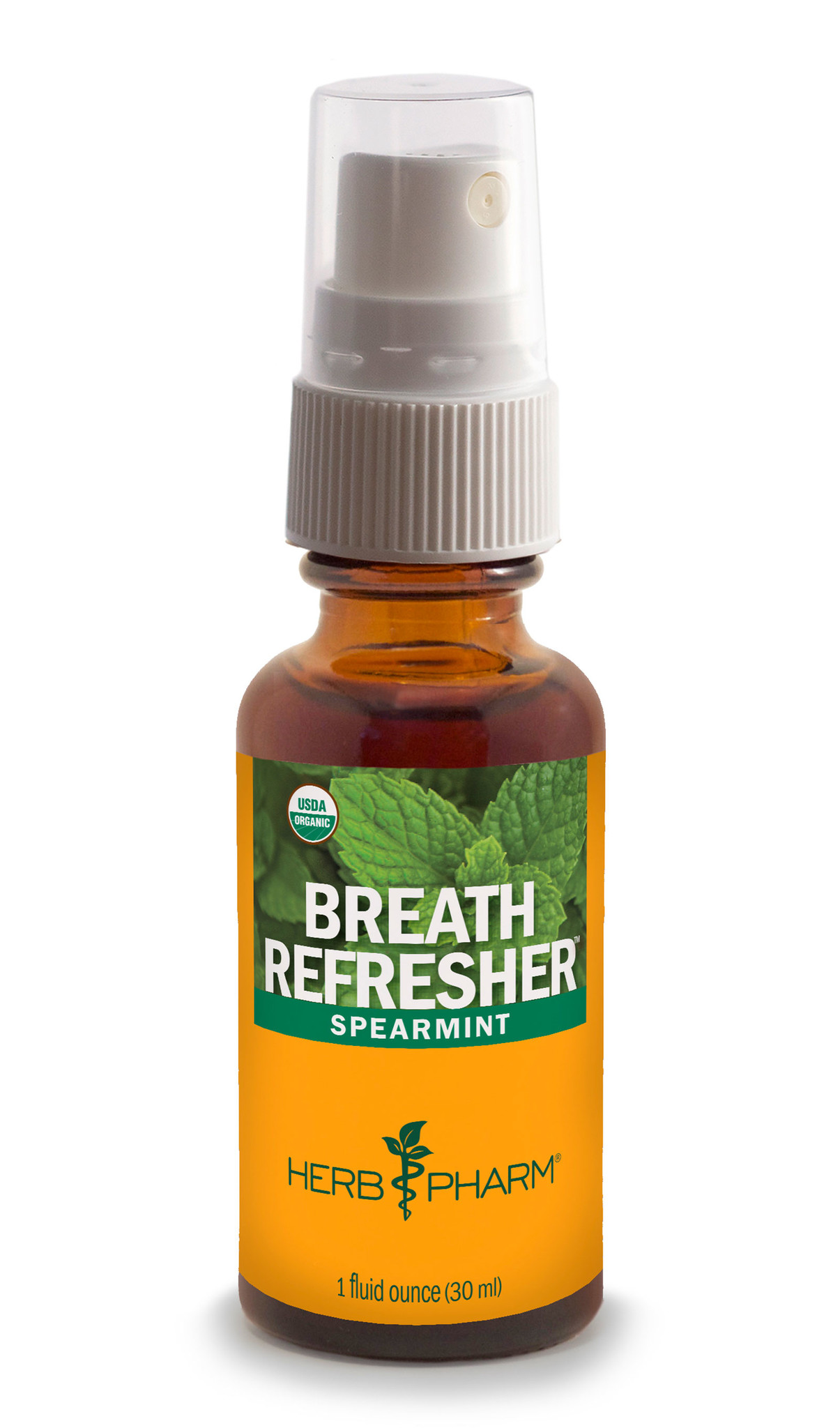 BREATH REFRESHER SPEARMINT-1