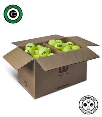 Wilson Triniti Tennis Balls - 72 Ball Club Case