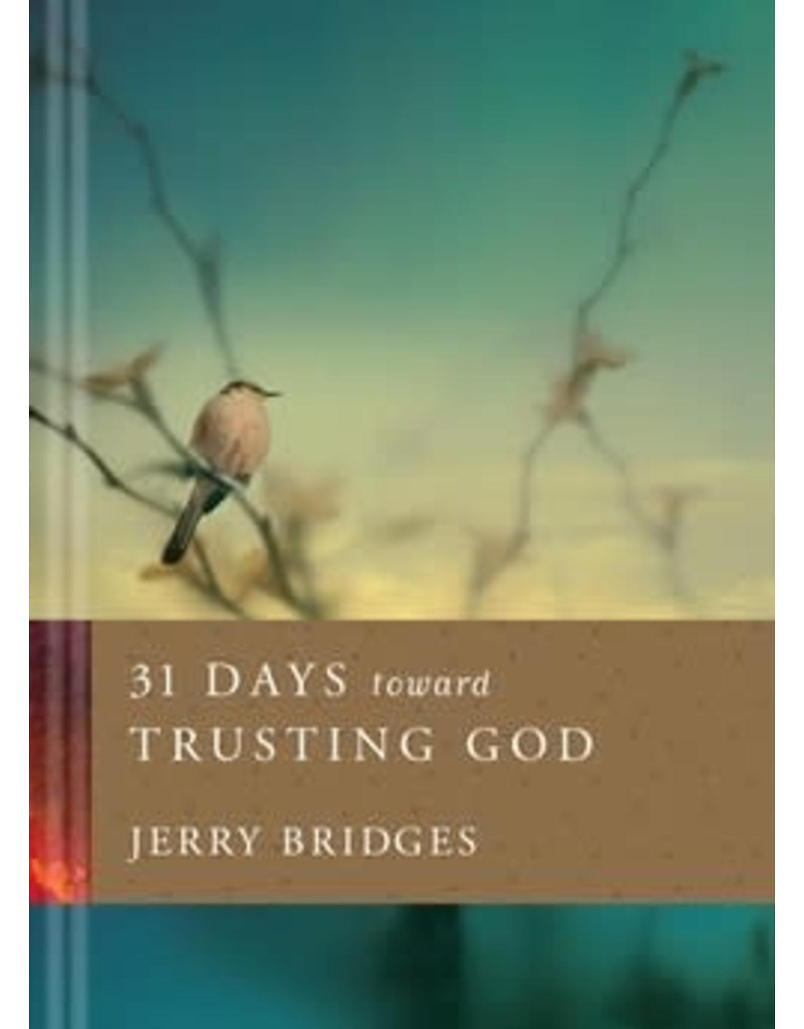 Bridges 31 Days Toward Trusting God