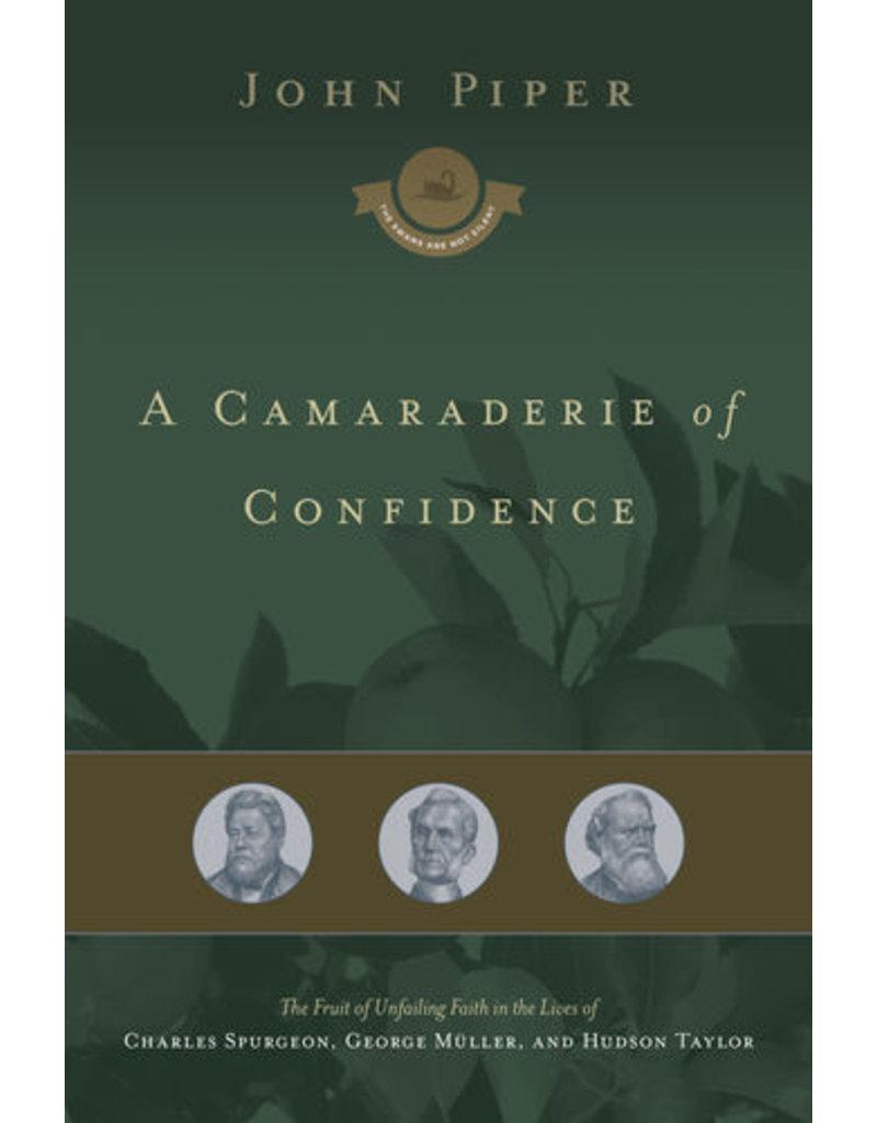 Piper A Comaraderie of Confidence