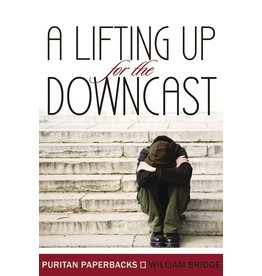 Bridge A Lifting up for the Downcast(Puritan Paperbacks)