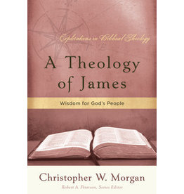 Morgan A Theology of James, Explorations in Biblical Theology