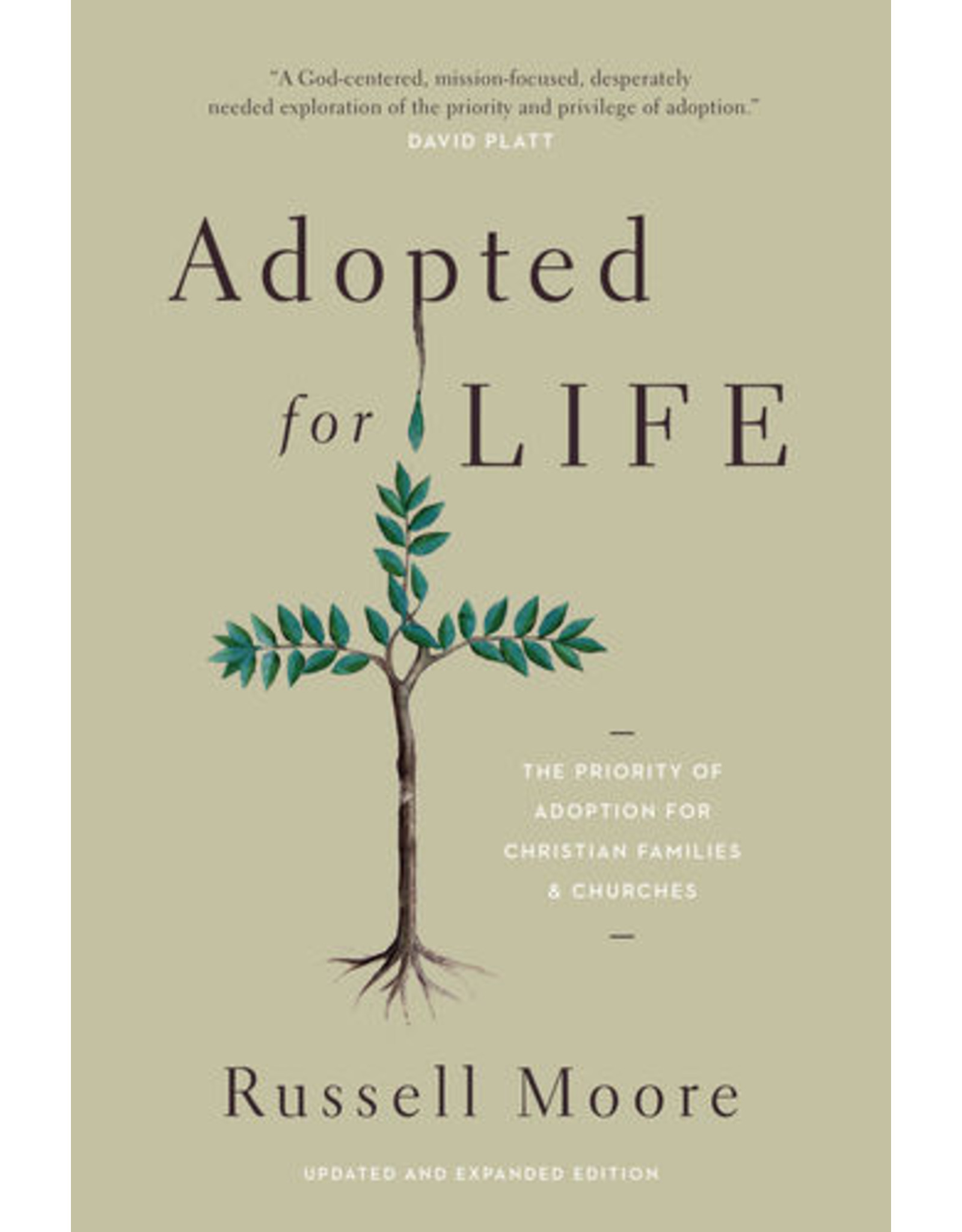 Moore Adopted for Life