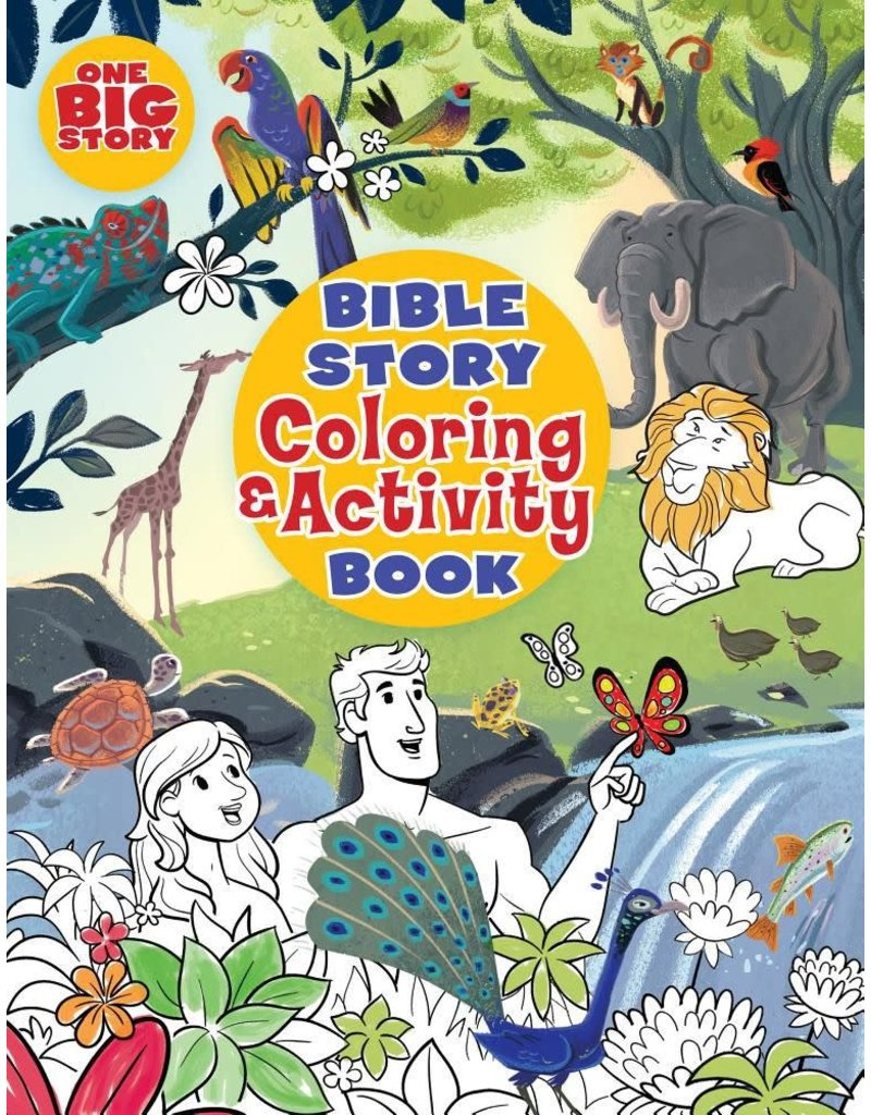 Big Picture Interactive Bible Story Coloring & Activity Book, The