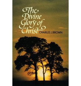 Brown The Divine Glory of Christ(Puritan Paperbacks)