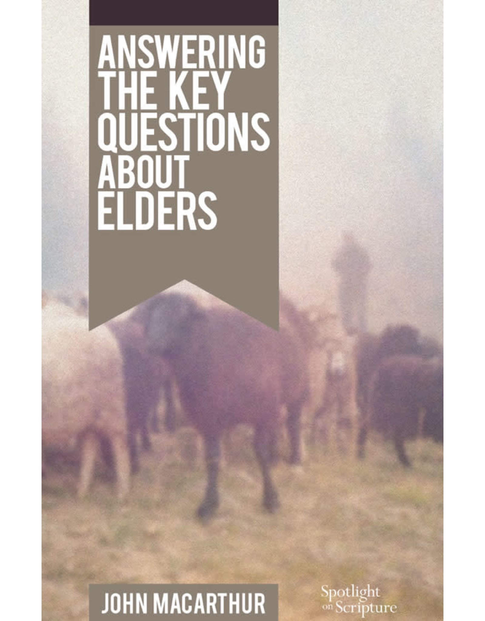 MacArthur Answering the Key Questions About Elders