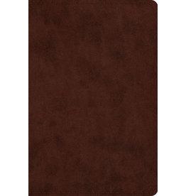 Crossway ESV Compact Bible, Trutone Brown