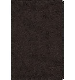 Crossway ESV Large Print Trutone Black