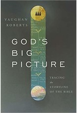 Roberts God's Big Picture