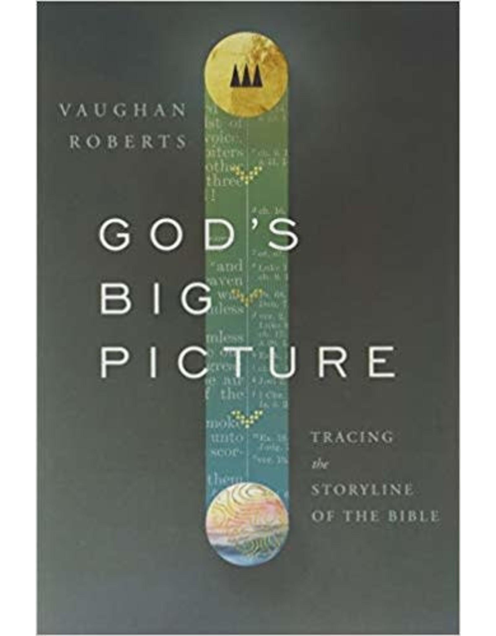 Roberts God's Big Picture