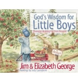 George God's Wisdom for Little Boys
