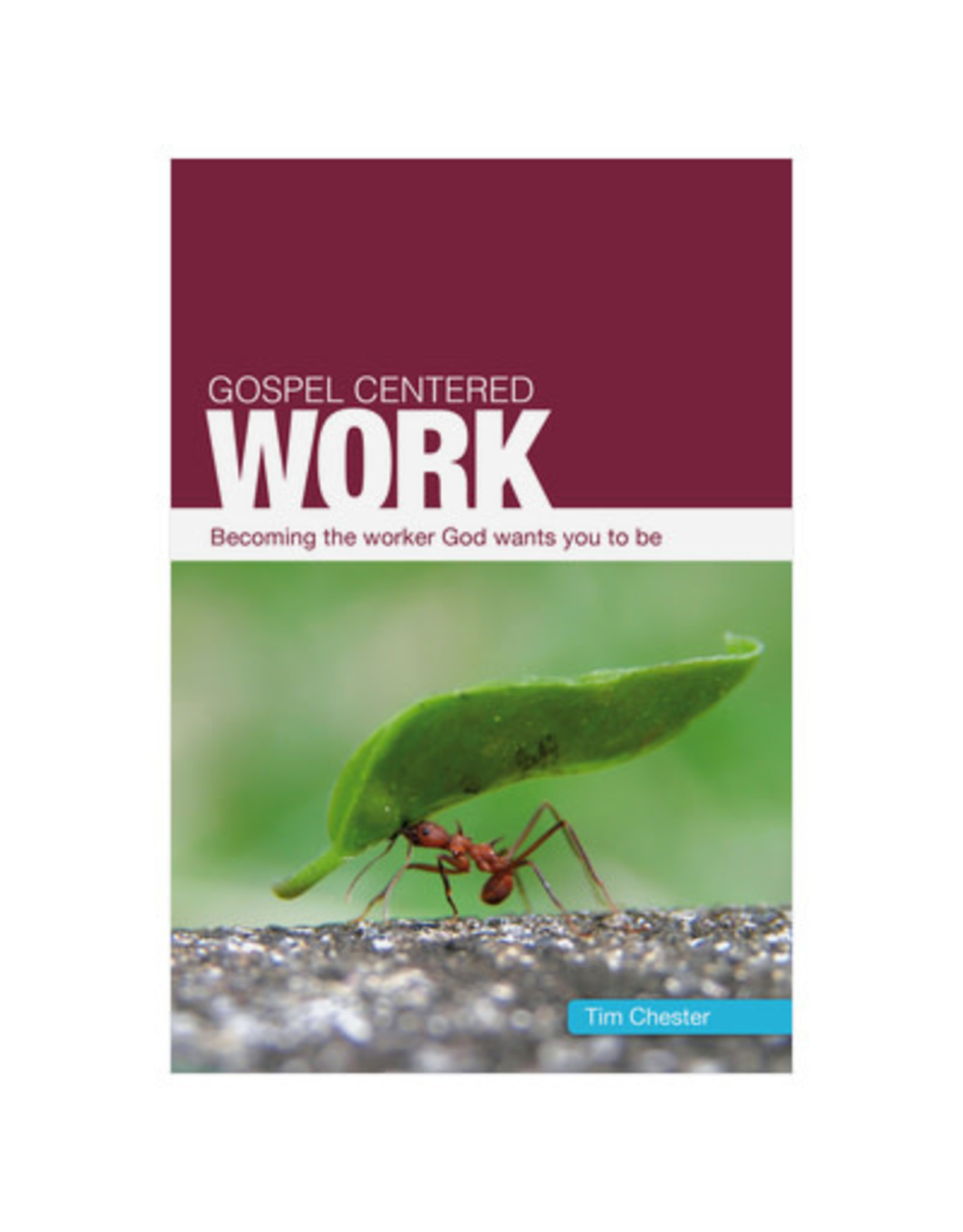 Chester Gospel Centered Work