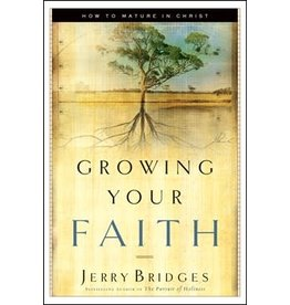 Bridges Growing Your Faith