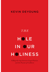 DeYoung The Hole In Our Holiness