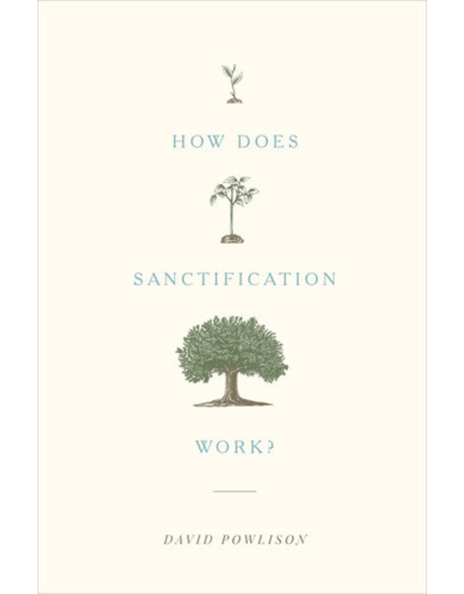 Powlison How Does Santification Work?