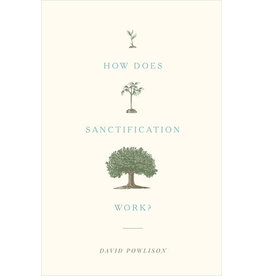 Powlison How Does Santification Work?