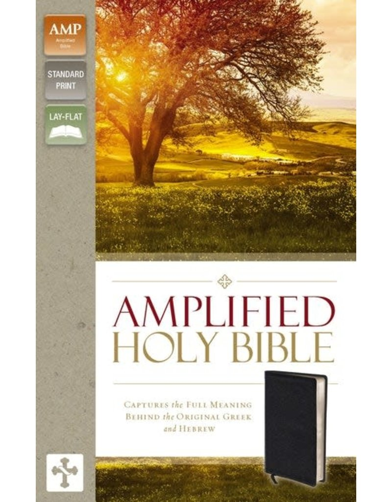Amplified Bible Personal Black Leather
