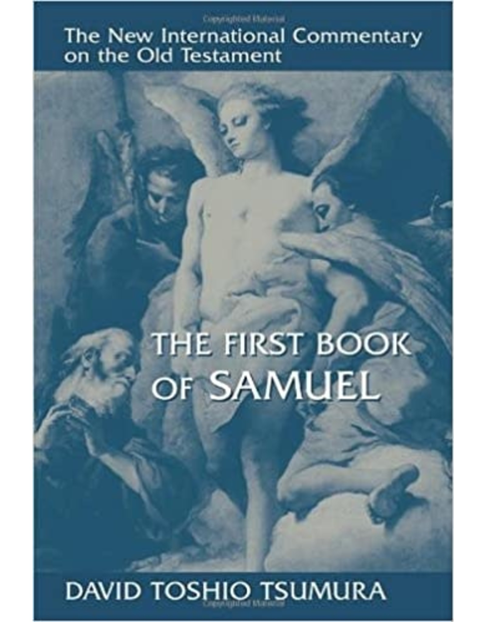 Tsumura New International Commentary - 1 Samuel