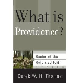 Thomas What Is Providence?