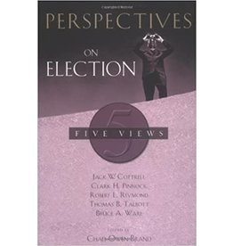 Brand Perspectives on Election