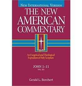 Borchert New American Commentary - John 1-11
