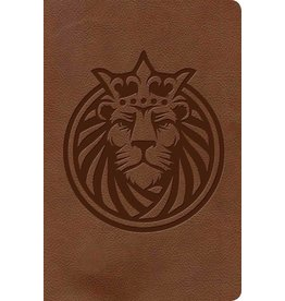 Holman KJV Kids Bible - Lion Leathertouch